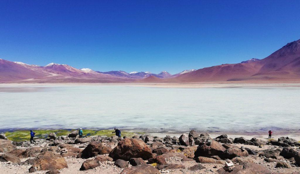 Laguna blanca, uno de los atractivos del día 1 del tour por Uyuni.